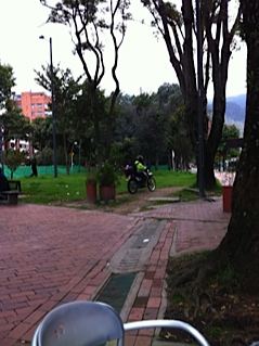 Policía sobre paso peatonal