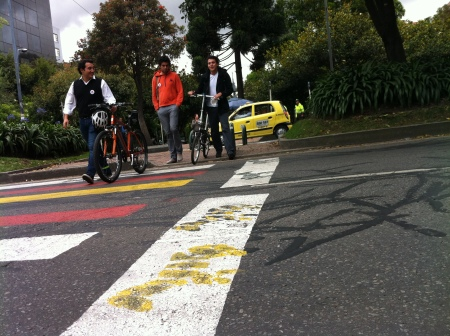 Cebra de Colores pintada por grupo de ciudadanos -combo2600-