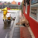 Ciudadanos durmiendo en las calles, totalmente desatendidos