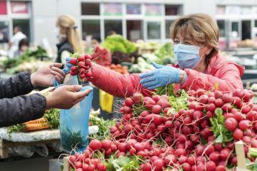 Farmers Market COVID